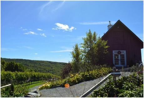 Walpole Winery 1 via Fitful Focus
