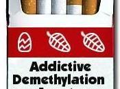Genetics Smoking