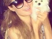 Paris Hilton Spends $13K World's Smallest Pomeranian