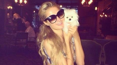 Paris Hilton spends $13K on the world's smallest Pomeranian