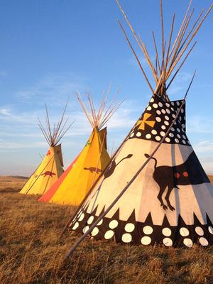 Bison treaty Teepee Lodges