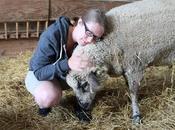 World Farmed Animals
