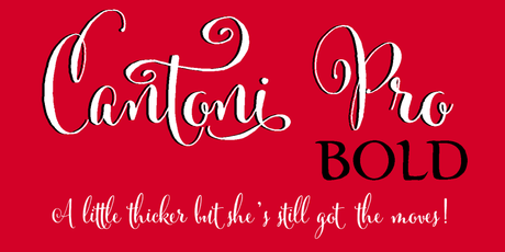 Cantoni-Pro-Bold,DIY wedding shower, DIY invitations,Dom Loves Mary Calligraphy Font, wine themed invitation, Calligraphy Fonts, Script fonts, Cursive Fonts, Fonts, Fancy Fonts, Wedding Fonts, Fonts for invitations, fonts for wedding Shower Invitations, Fonts for Baby Couples Shower Invitations, Best Selling fonts, Most popular fonts, Bold fonts, Fancy letters, Fancy alphabets, Invitation fonts, DIY Wedding, DIY Invitations