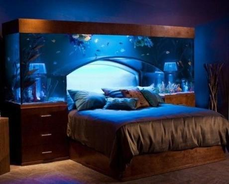 Three Rooms in Your Home That Are Crying out for a Fish Tank