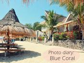 Photo Diary: Blue Coral Beach Resort Laiya, Batangas