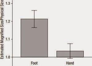 Your hand is not a perceptual ruler