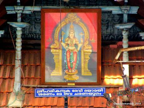 A temple for Mohini near Guruvayur!
