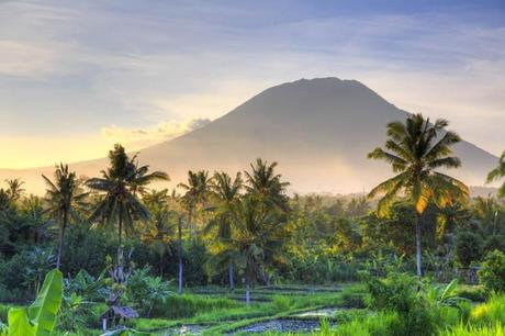 Vibrant green vegetation and palm trees form a silhouette against a mist-shrouded volcano illuminated by half-light in Bali.