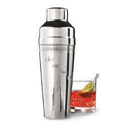 Master Mixologist Cocktail Shaker