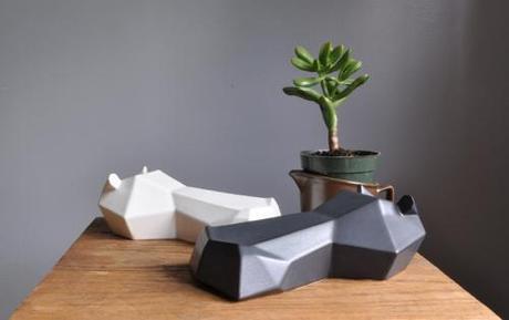 hamilton-with-a-succulent