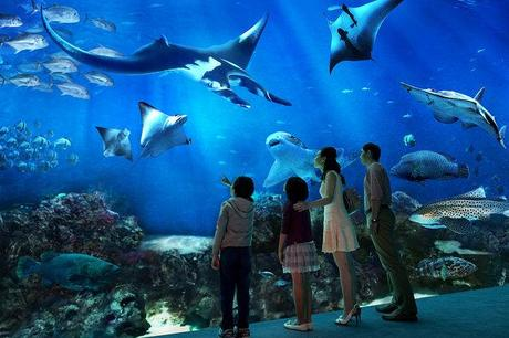 Resorts World Sentosa: One Day Itinerary and Budget