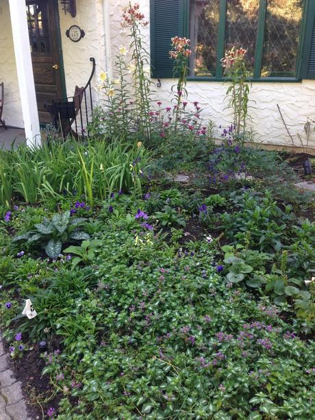 UNDER CONSTRUCTION - digging up the monet garden