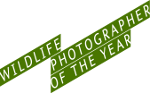 (C) Wildlife Photographer of the Year Award