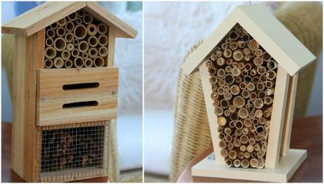 bee and bug box