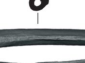 Ancient Reveals Often When Humans Neanderthals Interbred