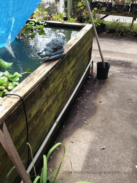 This simple water garden was constructed by layering 4 x 4 posts , installing a pond liner, securing it to the top post, and covering the rim with 1 x 4 trim.