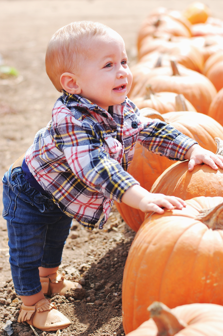 A Trip To The Pumpkin Patch With My Boys
