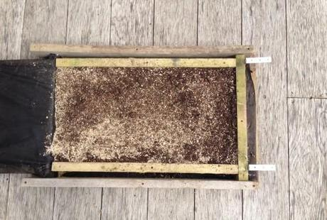 frame filled with compost mix