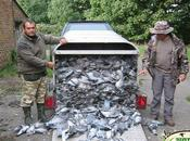 Pigeon Shoot Bill Buried Frightened Legislators
