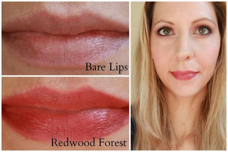 My Top 5 Fall Lipsticks Under $6
