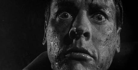 Invasion Of The Body Snatchers-06