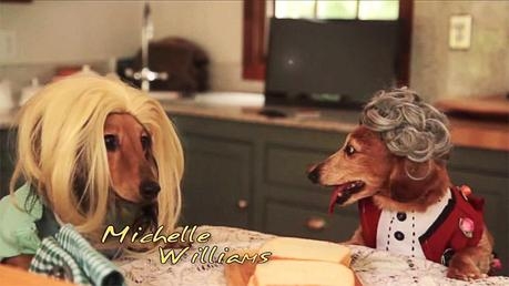 Two Dachunds dressed in Wigs