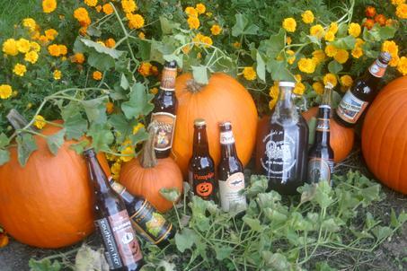 http://beernexus.com/images/pumpkin_20brew_1_.jpg