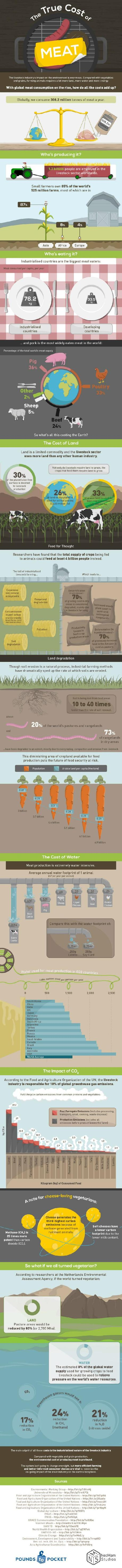 environmental impacts of eating meat infographic