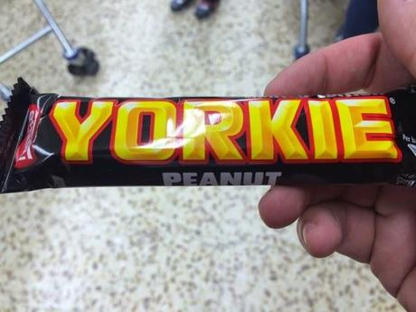 Today's Review: Peanut Yorkie