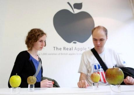 Real-Apple-Store-5