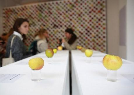 Real-Apple-Store-2