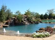 Natural Pool Flower Garden