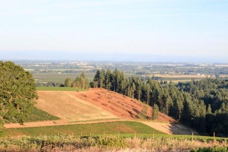 oregon's wine country is pretty rad