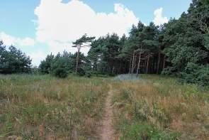 To Liepaja and Beyond