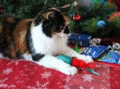 Festive Gift Guide Christmas Cats