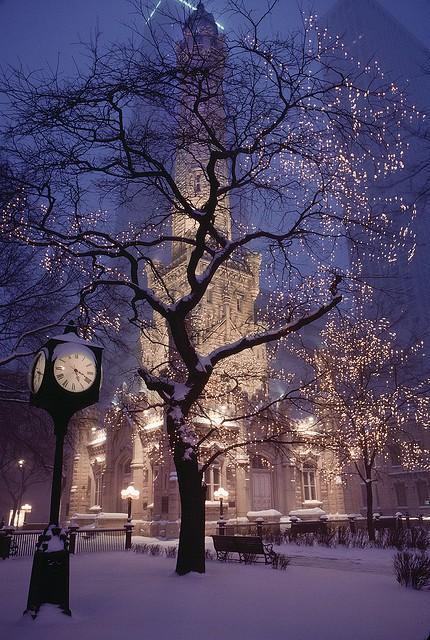 Top 10 Christmas Tree Theme Ideas!