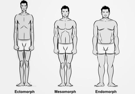 Men\'s Body Types: Traits and Fashion Tips - Paperblog