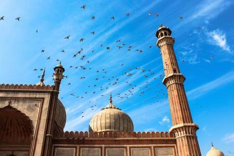 harsha_photography_delhi_masjid10