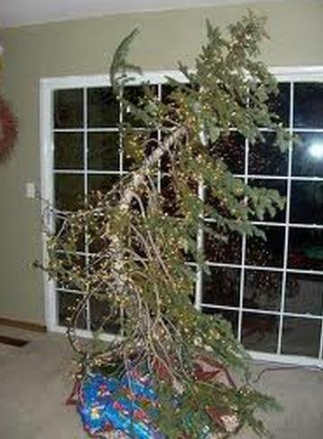 Top 10 rather sad looking christmas trees paperblog for Best looking christmas tree