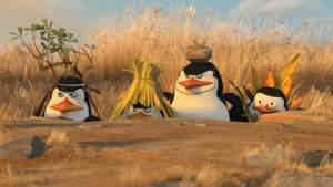 Penguins of Madasgar