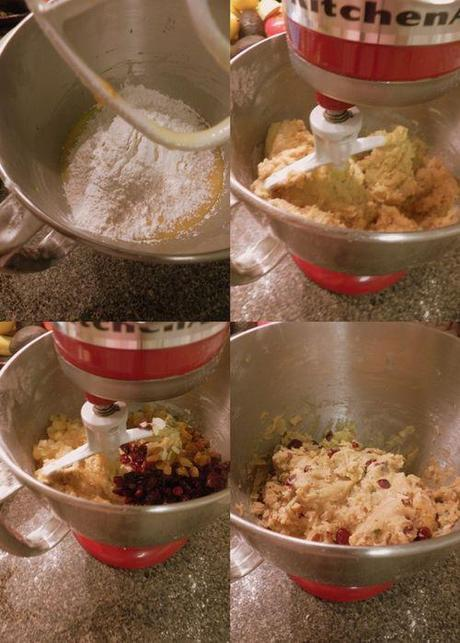 Christmas Biscotti - collage3
