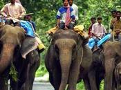 Jaldapara Tourism