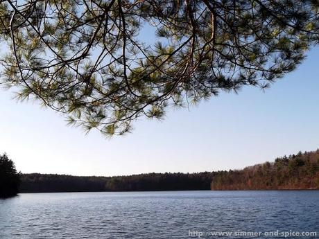 Walden Pond State Reservation, MA