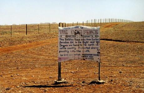 The Dingo Fence