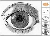 M.C. Escher Eye Drawing