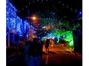 Bangalore: December Call Ambiance