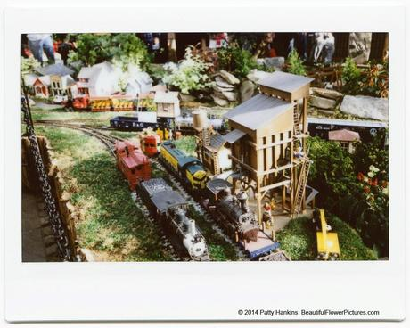 Train Yard, Train Display at Brookside Gardens © 2014 Patty Hankins