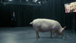Black Mirror Pig