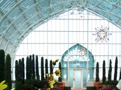 Warm Como Park Conservatory's Free 'Music Under Glass' Series Winter Carnival Orchid Show