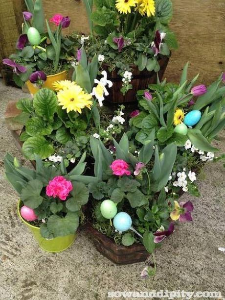 Planting Spring Bulbs in Winter